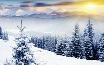winter scenes   Desktop Wallpaper