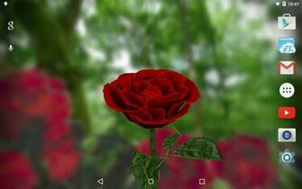3D Rose Live Wallpaper   Android Apps on Google Play