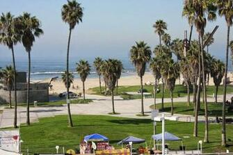 Venice beach California Windows wallpaper Wallpaper view