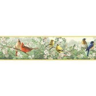 BIRDS THROUGHOUT THE TREES WALLPAPER BORDER   All 4 Walls Wallpaper