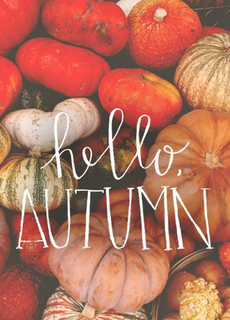 HELLO AUTUMN Be Brave with Quotes in 2019 Hello autumn