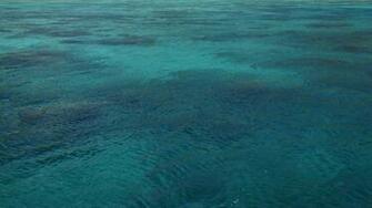 Blue Ocean wallpaper   673388