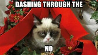 Grumpy Cat Meme Pictures humor funny cats christmas wallpaper