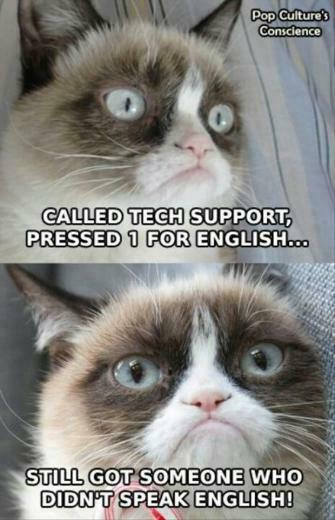 Funny Cats Top 49 Most Funniest Grumpy Cat Quotes 3jpg