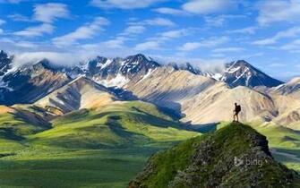 Denali National Park Wallpapers HD Wallpapers