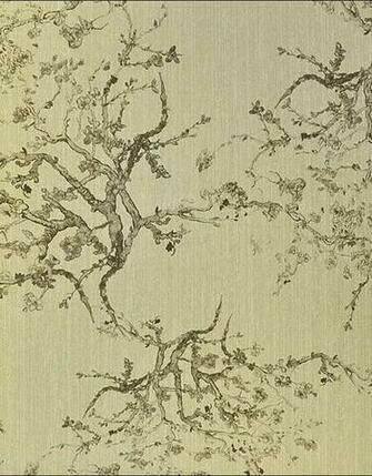 Quod   Kyoto   204 C01