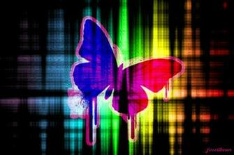 Colorful Butterfly Background   Wallpaper 30931