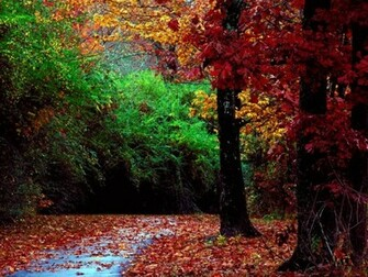 beautiful autumn season wallpaper hd beautiful autumn season wallpaper