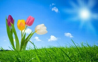Spring Nature Wallpapers HD Wallpapers