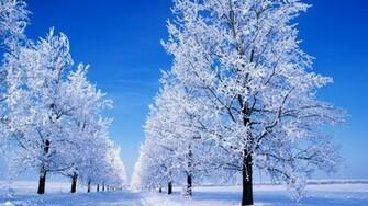 Winter Snow Scenes Desktop