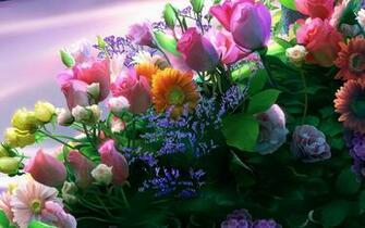 HD Flowers Wallpapers For Desktop Fine HDQ Flowers Pics