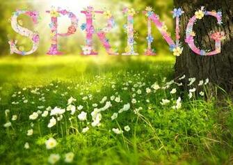 First Day of Spring 2020 The Spring Equinox Spring wallpaper hd
