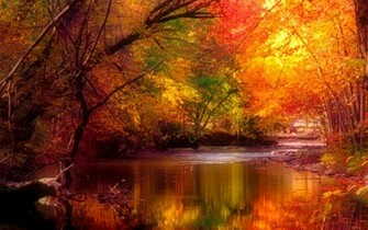 BEST COLLECTION beautiful nature wallpapers