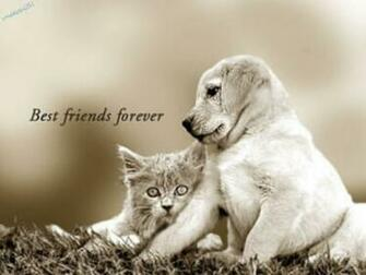 you need not worry you have a forever friend and forever has no end