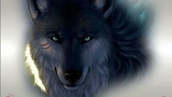 Black Wolf Wallpapers 11219 Hd Wallpapers in Animals   Imagescicom