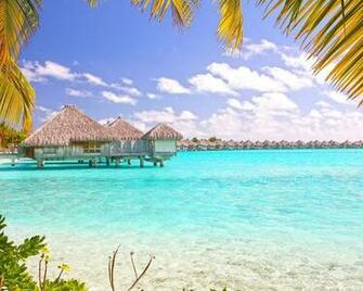 Tropical Beach Bora Bora Polynesia Desktop Wallpaper