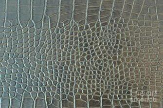Crocodile Skin httpfineartamericacomfeatured2 crocodile skin