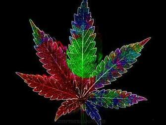 Psychadelic Weed Leaf   WeedPad Wallpapers