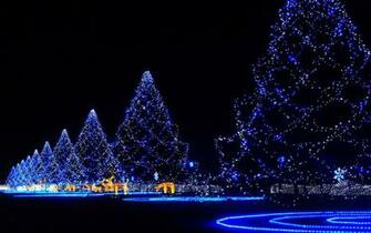 Holidays christmas lights wallpaper 1920x1200 24098 WallpaperUP