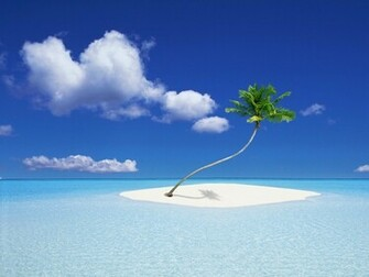Island Bounty   downloads backgrounds wallpapers