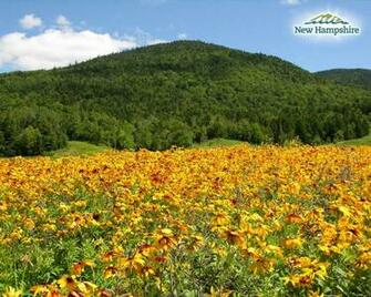state of new hampshire new hampshire visitors tour operators media