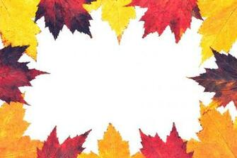 Autumn leaves border Pictures Stock Photos Wild Retina