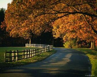 HD Wallpaper Background and Desktop Autumn Wallpaper   HD