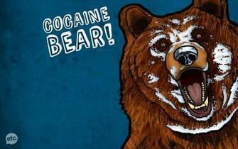 cocaine bears 1600x1000 wallpaper Animals Bears HD Desktop