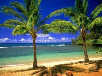 tropical beach desktop wallpaper which is under the beach wallpapers