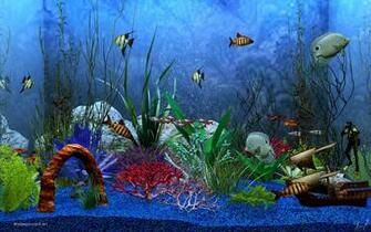 fish screensaver 3d aquarium digital goldfish screensaver is a 3d