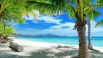 Tropical Beach Scenes Cool