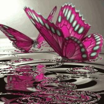 Butterflies On Water Live Wallpaper Kindle Fire Apps