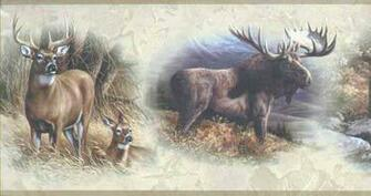 Wildlife Collage Wallpaper Border WD4304B   Wallpaper Border