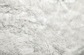 White Fur Background Stock Photo Thinkstock
