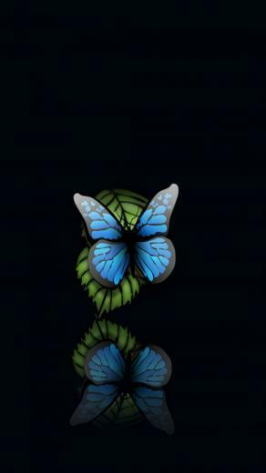 75 Butterfly Hd Wallpapers on WallpaperPlay