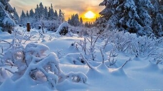 winter hd wallpaper for mac sekpiccom image hosting script image