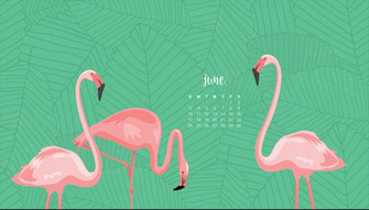 Audrey of Oh So Lovely Blog shares 4 FREE June Desktop Wallpapers