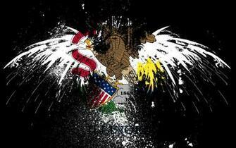 eagles hawk flags usa illinois state 1920x1200 wallpaper High