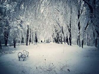 winter snow scenes wallpaper 2015   Grasscloth Wallpaper