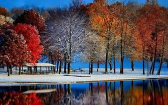 Autumn with winter 3000 x 1875 Forest Photography MIRIADNACOM