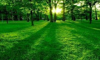 HD Wallpapers 800x480 Nature Landscape Wallpapers 800x480 Download