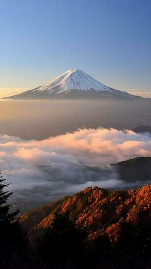 Mount Fuji Hd Qhd Wallpaper   [1080x1920]