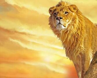 WALLPAPER DOWNLOAD 24 Lion Wallpapers For Desktop