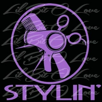 Stylin Vinyl Car Decal Cosmetology Hair Dresser Stylist Salon Window