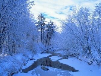 Winter Scene   Christmas Wallpaper 2735689