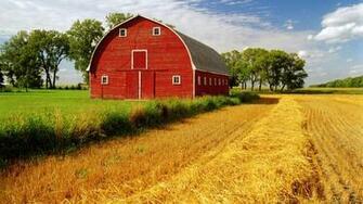 Barn rustic farm landscapes fields crop grass sky clouds wallpaper