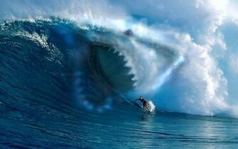 Tiburon surf wallpaper widescreen wallpapers original   329108