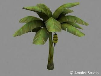 art objects flowers plants banana tree c amulet studio add a comment