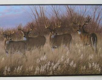 Deer Buck Doe Hunting Outdoors Wildlife Wallpaper Border 9 eBay