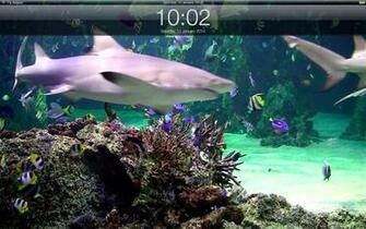 App Shopper Aquarium live lite Relaxing screensaver Clock